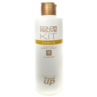Trend Up Color Relive restrukturační šampón 300 ml